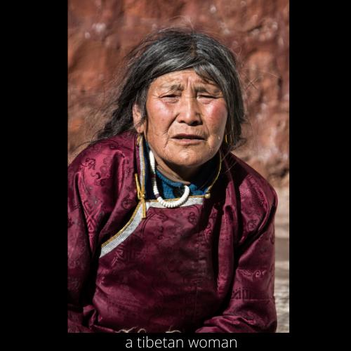 a tibetan monk (1).png
