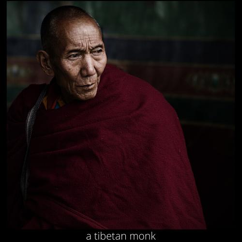 a tibetan monk.png